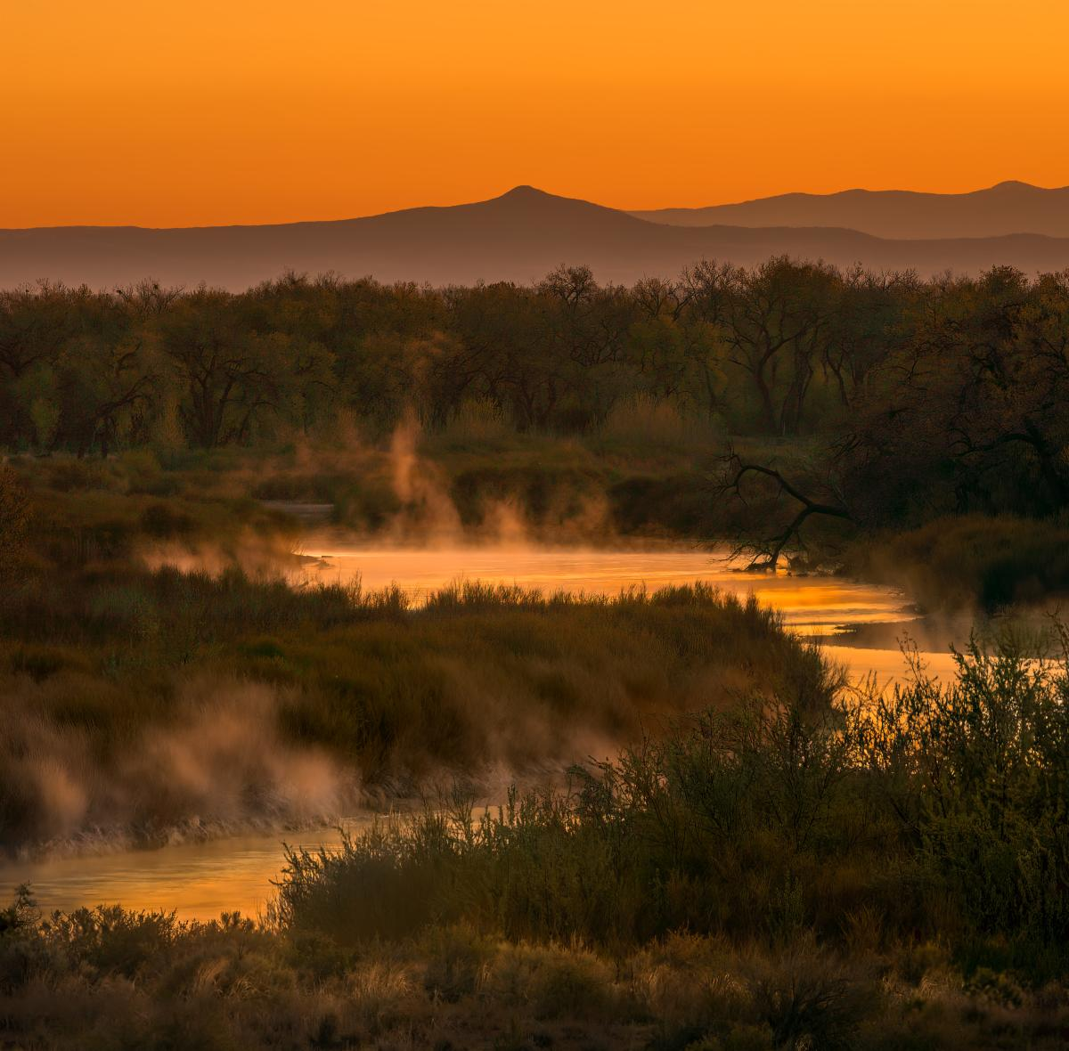 Misty Morning, Photograph by Pam Dorner, New Mexico Magazine
