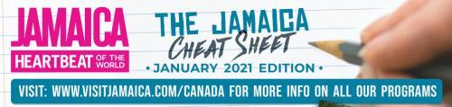 Cheatsheet Jan 2021 Header