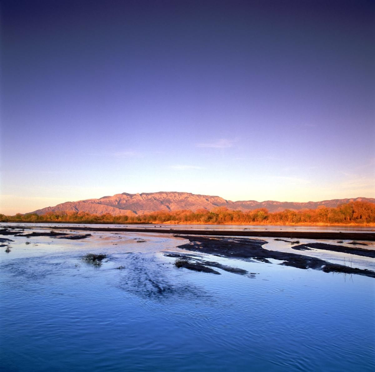 A view of the Sandia Mountains from the Rio Grande Bosque.