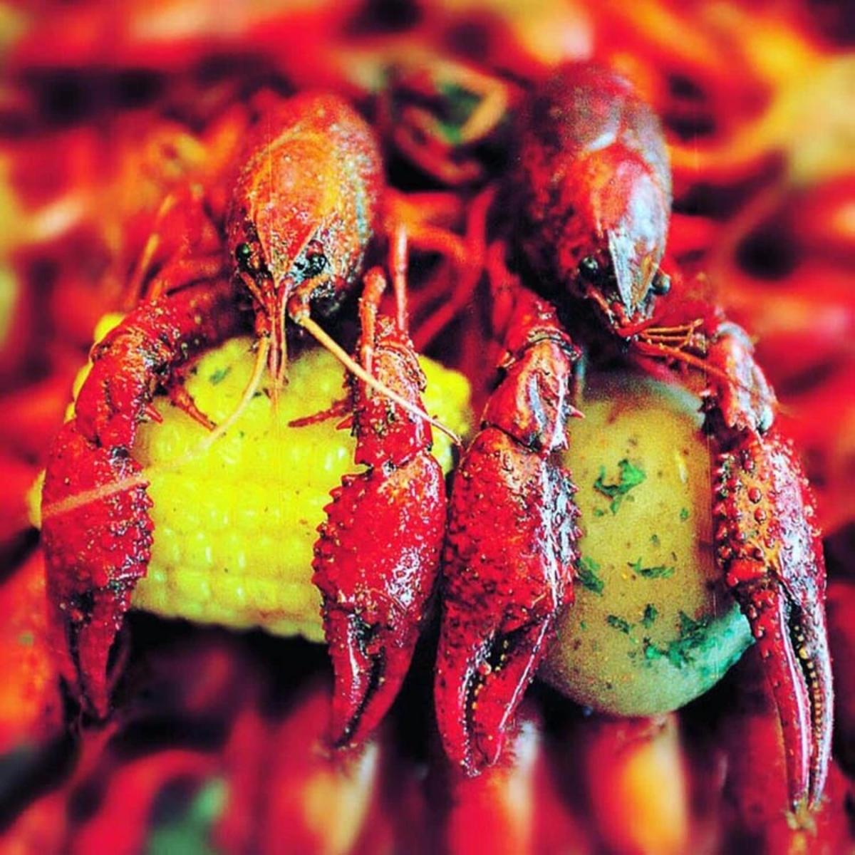 Crawfish from Crazy Cajun in Beaumont, TX