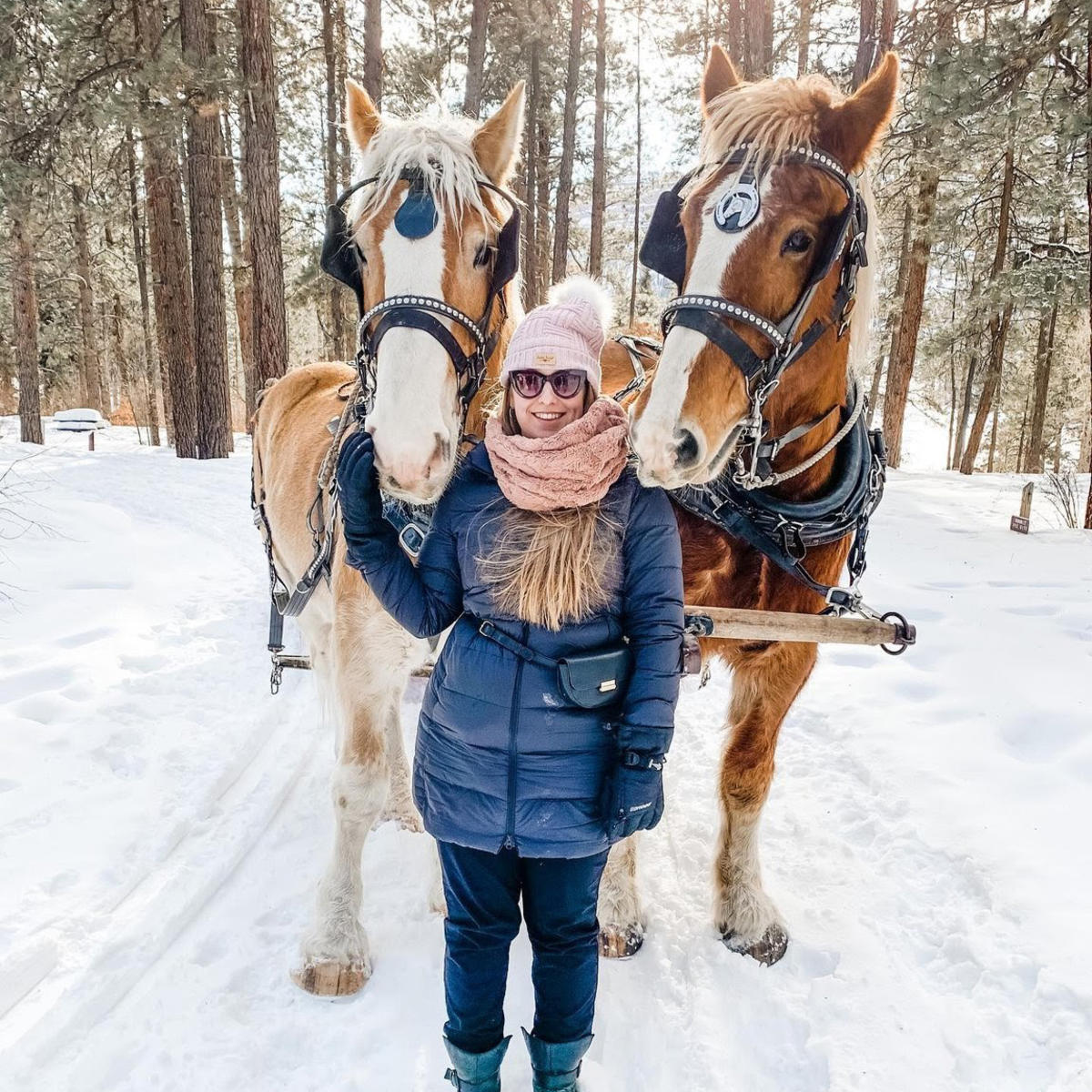 Sleigh Rides in Durango, CO