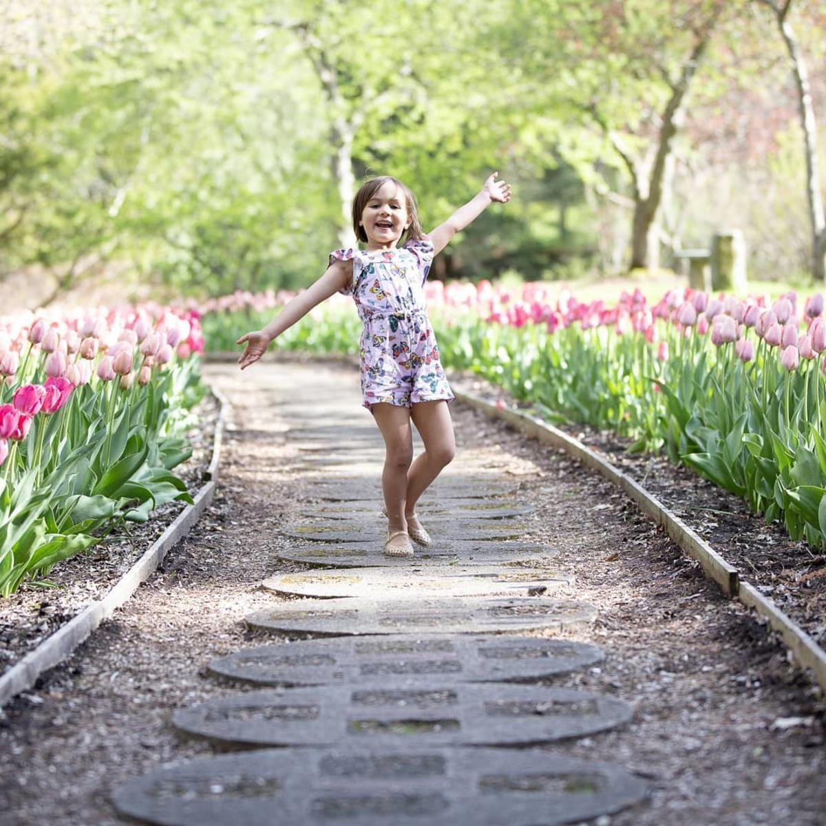 Little girl running barefoot along a path lined with tulips in full bloom at Dow Gardens in Midland