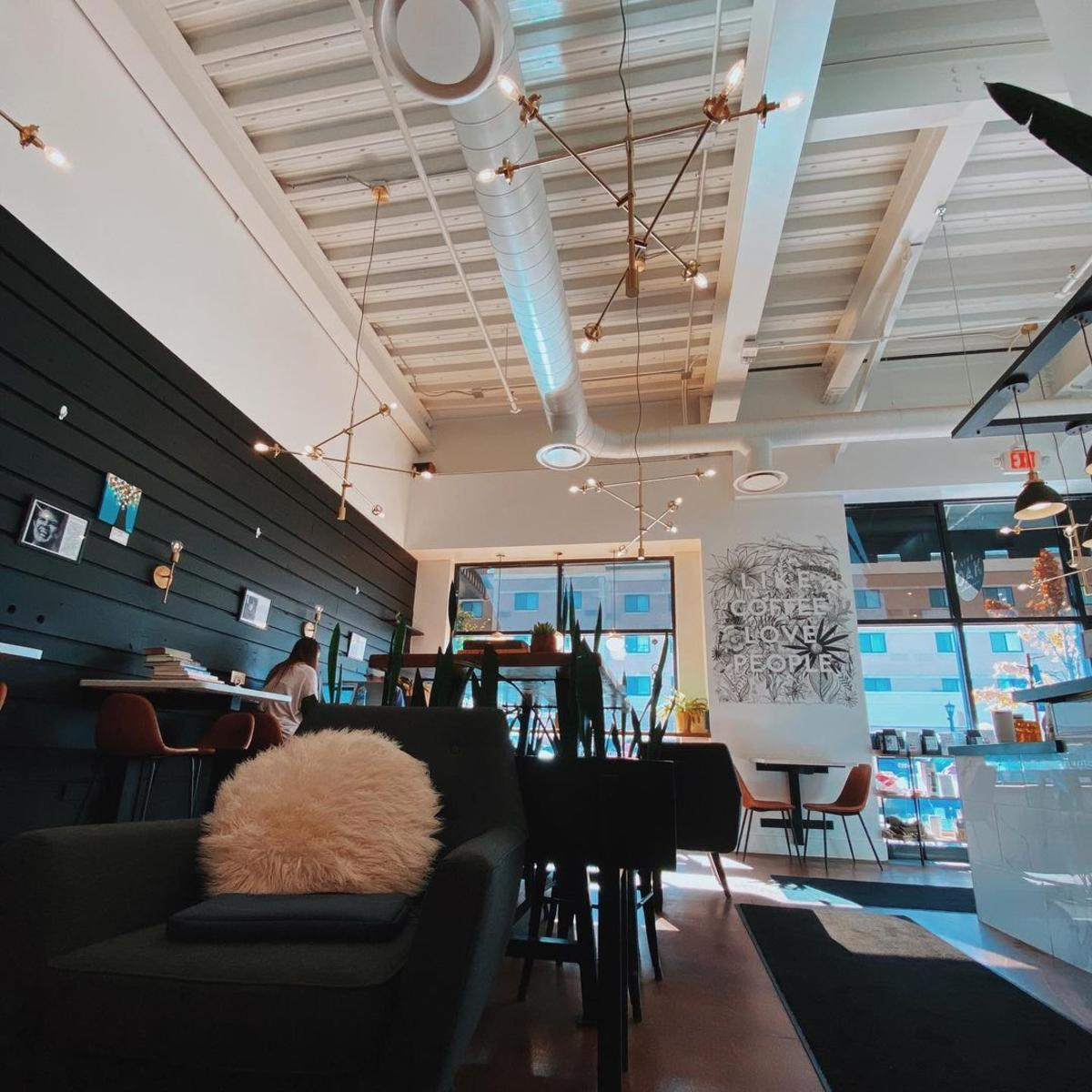 Gorgeous, modern interior at Live Oak Coffeehouse in Uptown Bay City