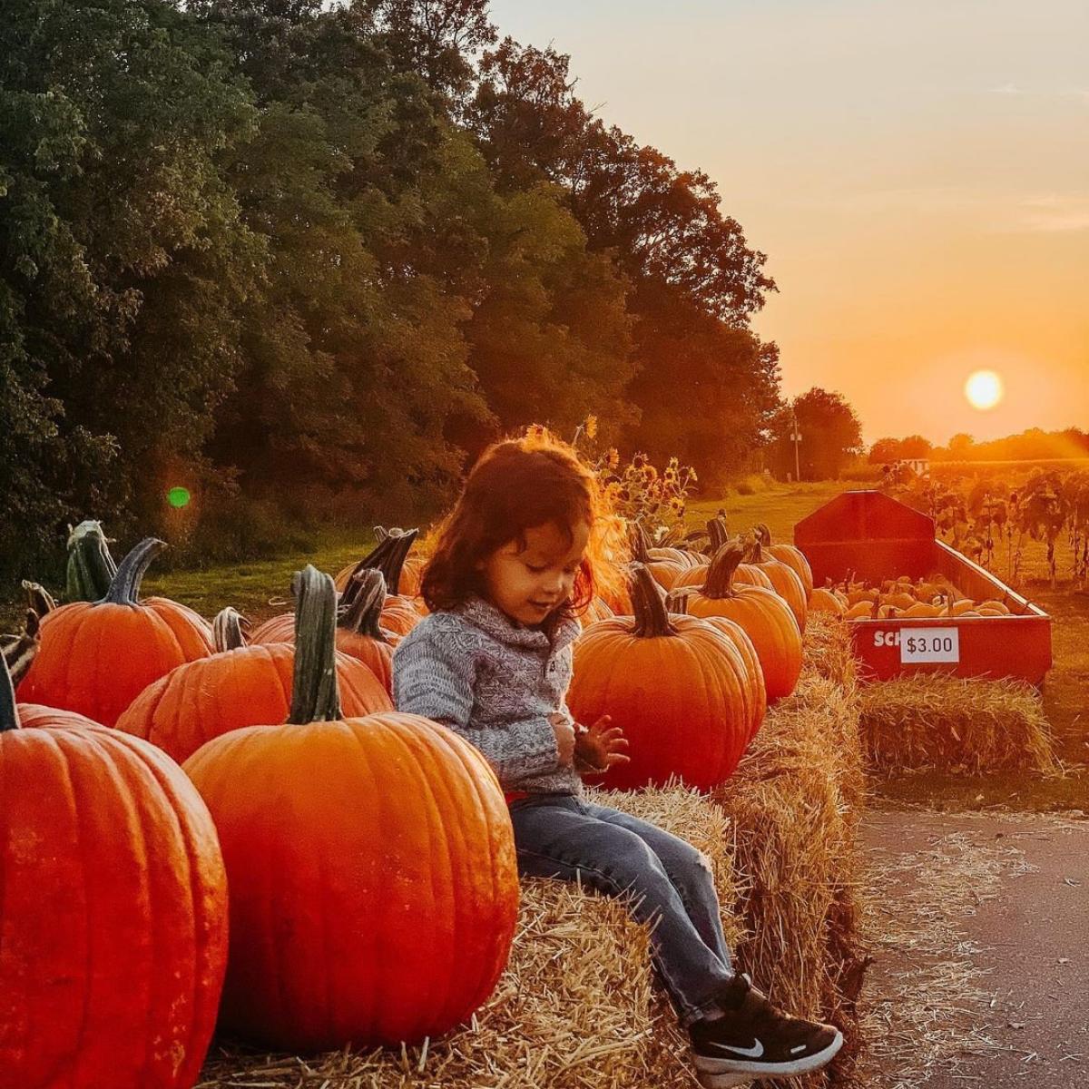 pumpkins, fall, girl, hay ride