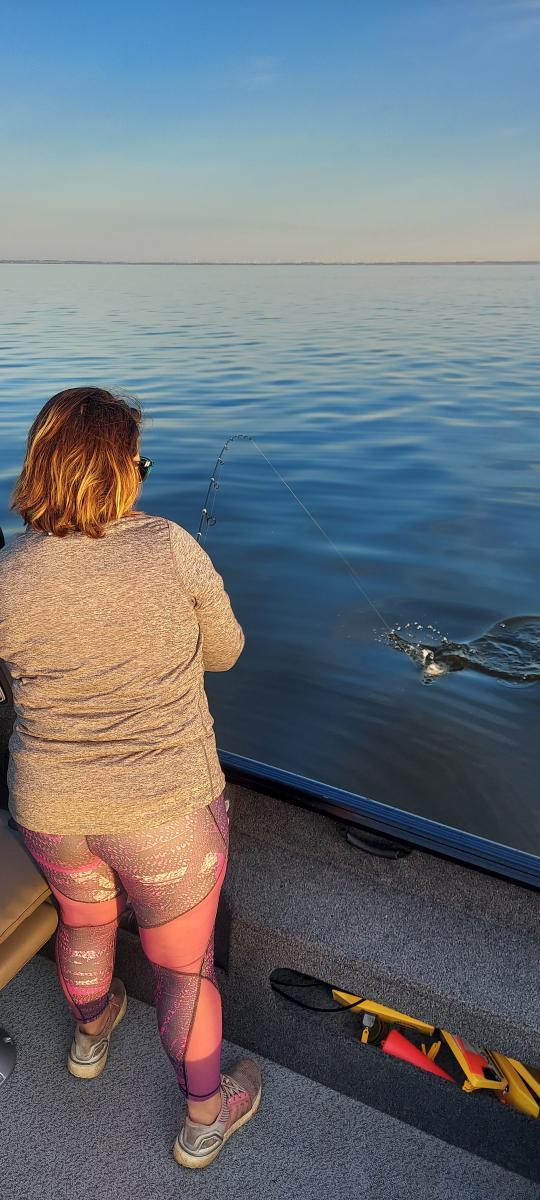 snell fishing blog