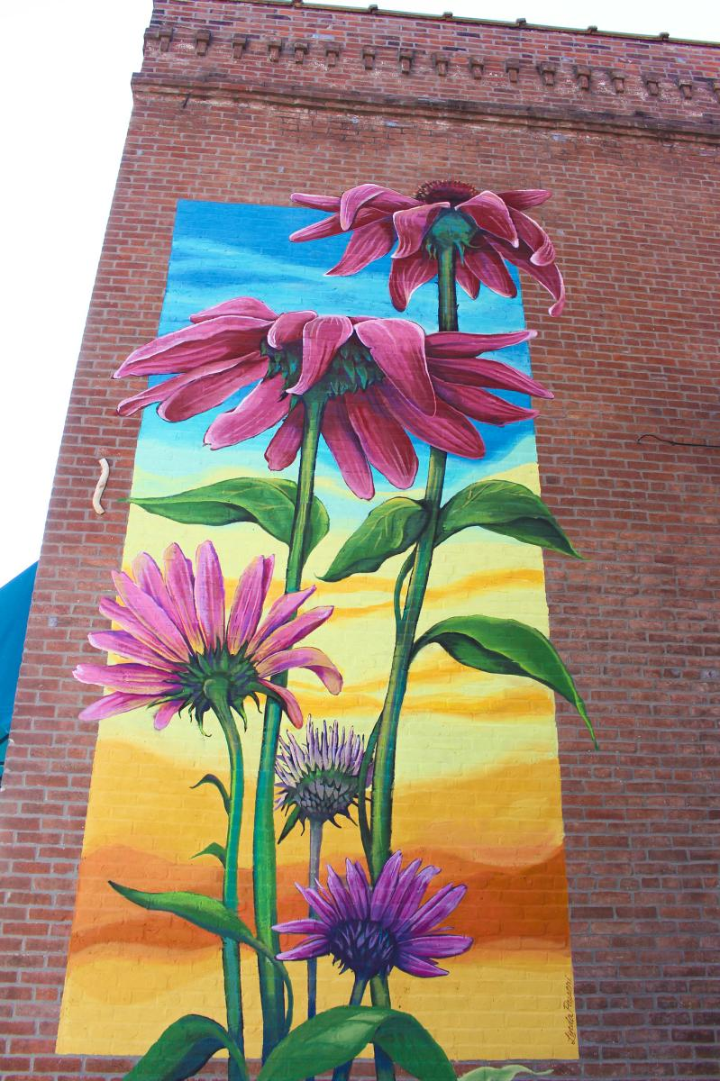 Commercial Street Daisies Mural
