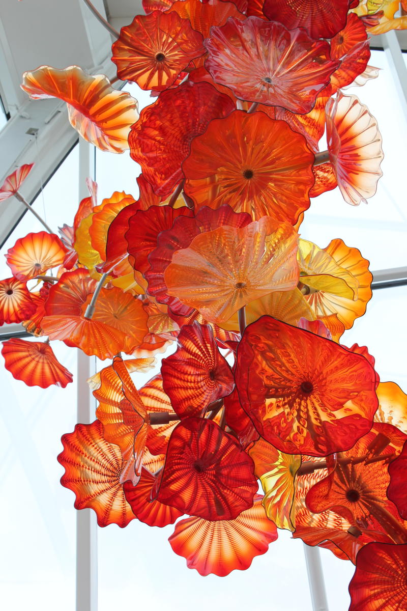 Chihuly Glass Museum in Seattle organic orange flower sculpture