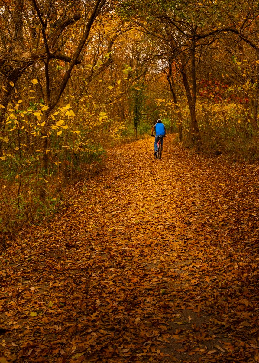 Wilson's Creek National Battlefield Fall Trail
