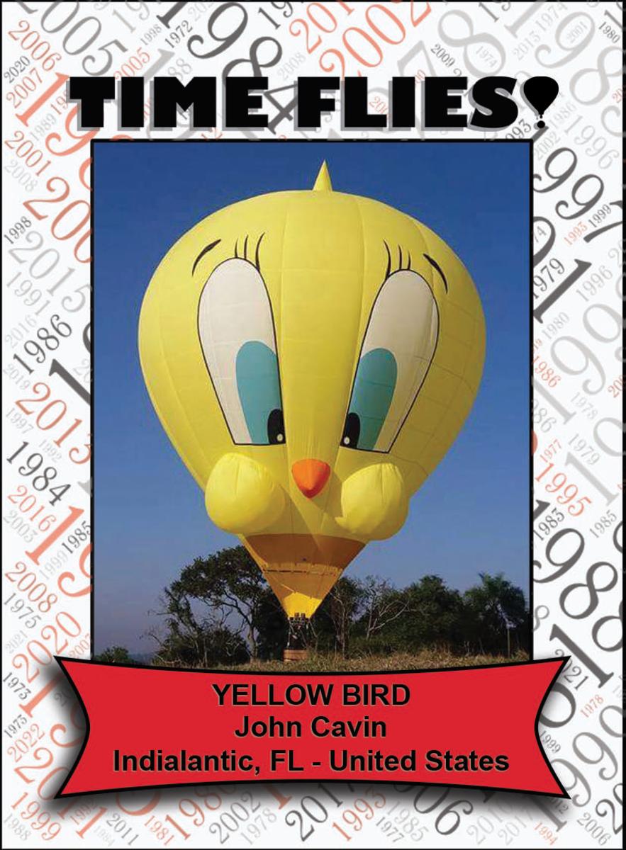 Special Shape - Yellow Bird