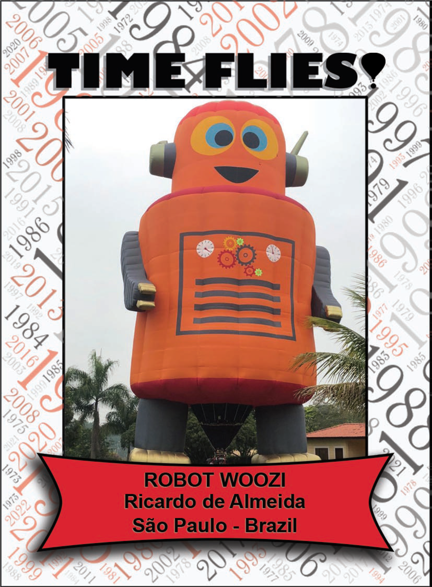Special Shape - Robot Woozi
