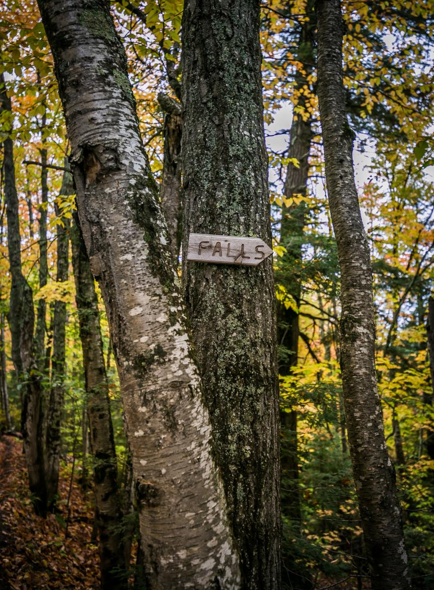 """""""Falls"""" signage pointing the direction of Big Pup Creek Falls in Big Bay, MI"""