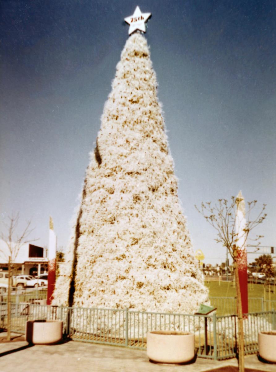The 1987 Tumbleweed Tree