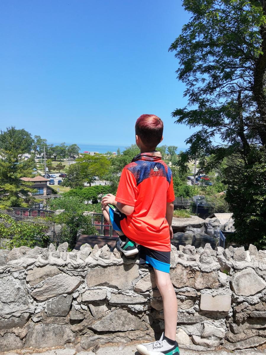 Yes Day in NWI - Washington Park Zoo beach lookout
