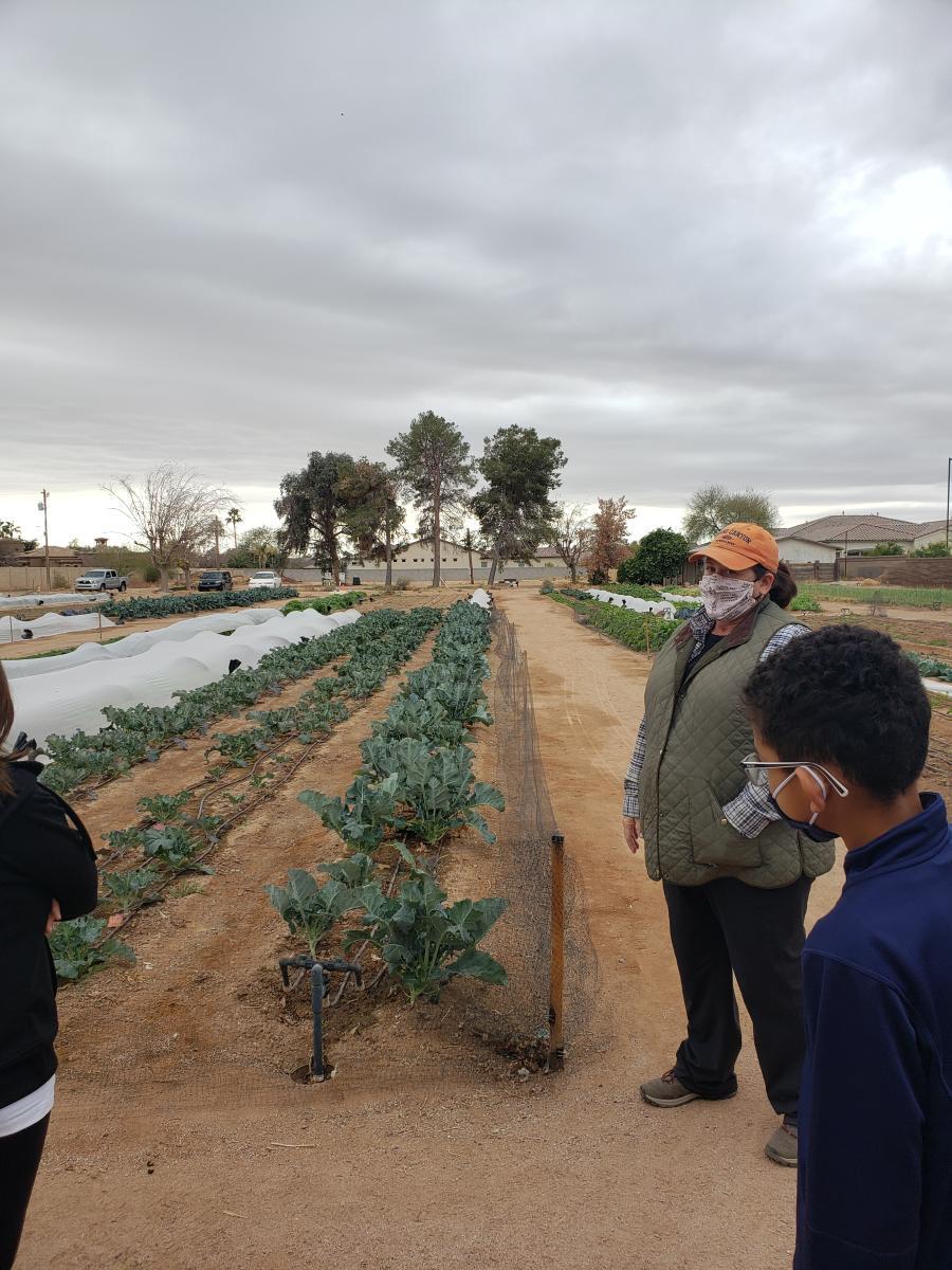 Greenhouse Gardens - farm tour