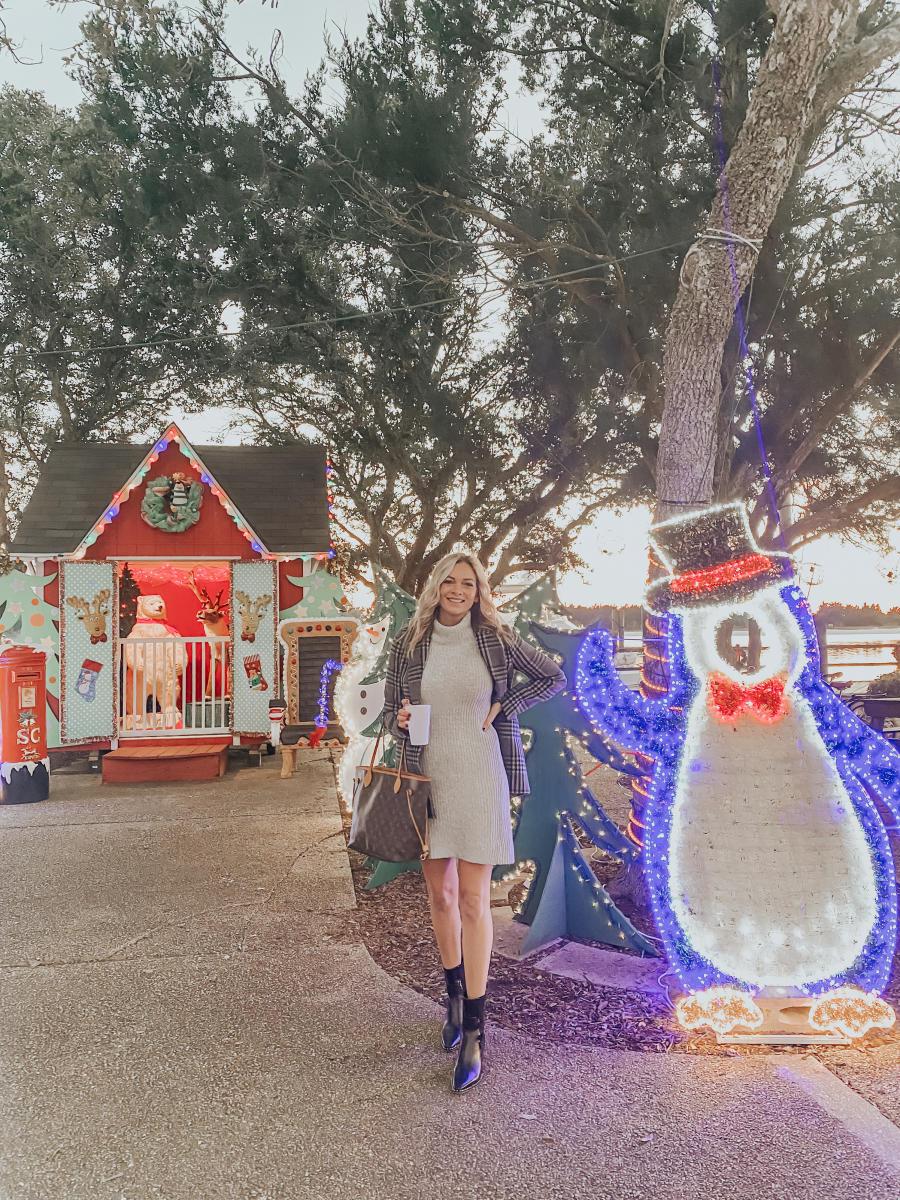The Coastal Blonde Beaufort Christmas Lights
