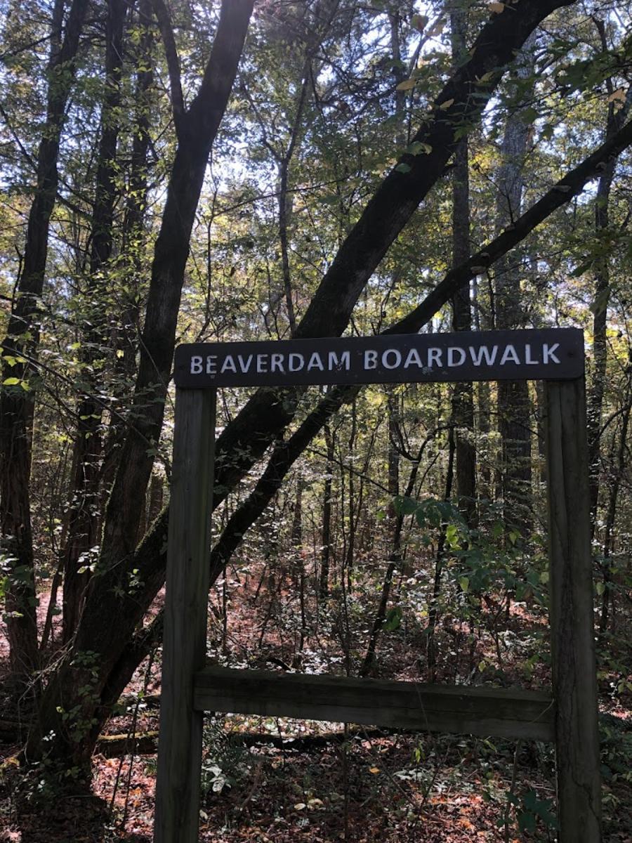 beaverdam boardwalk