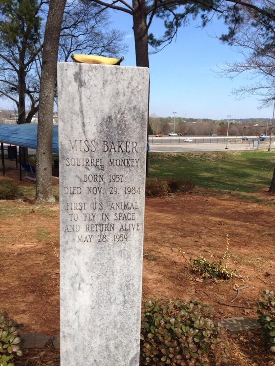 Miss Baker Grave