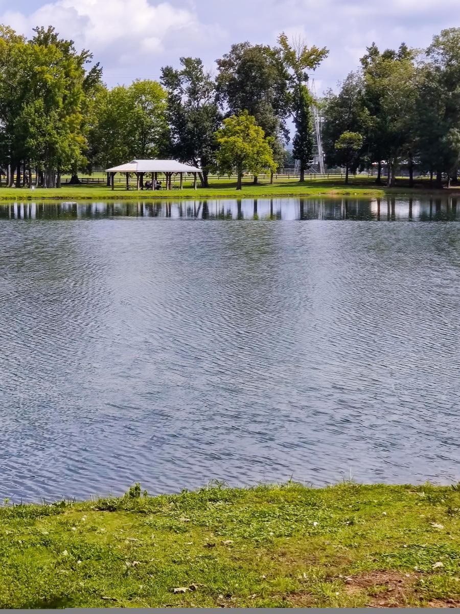 Brahan Spring Park