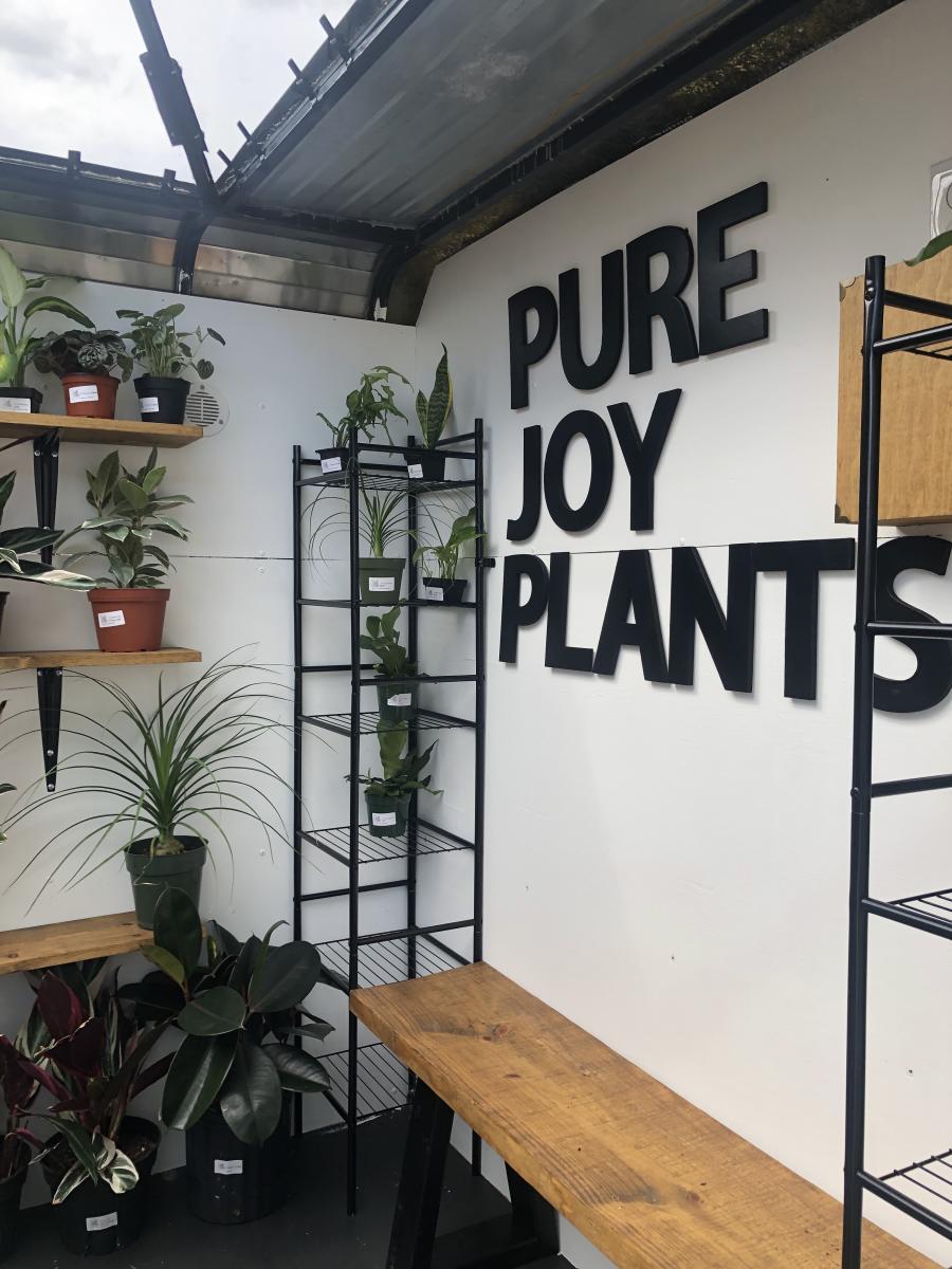 Pure Joy Plants