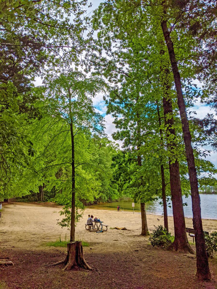 Jetton Park Beach Area