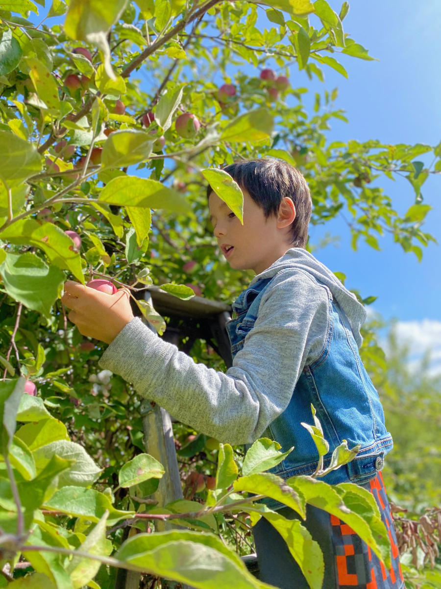 Savoring Fall in Oshkosh