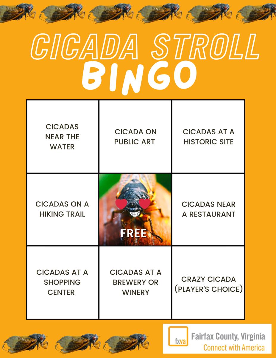 Cicada Stroll Bingo