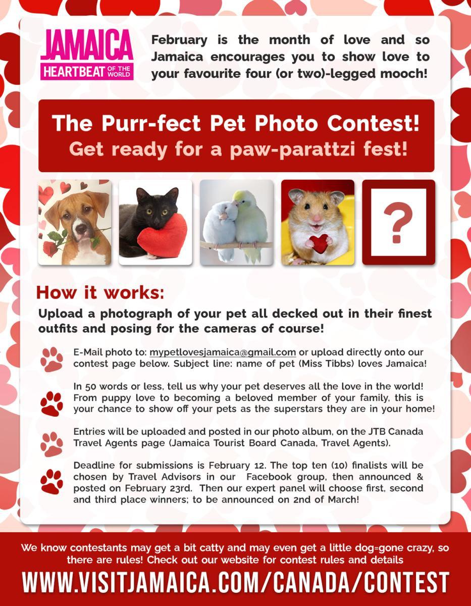 Purr-fect Pet Photo Contest