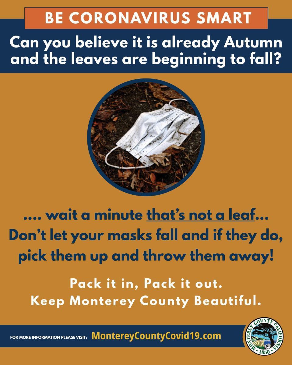 TMD Fall Litter