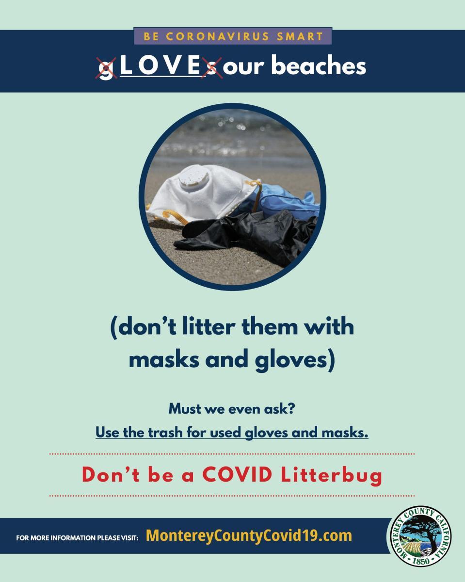 TMD Beach Litter
