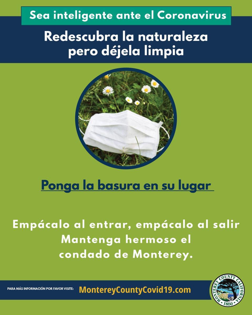 TMD Spanish Litter