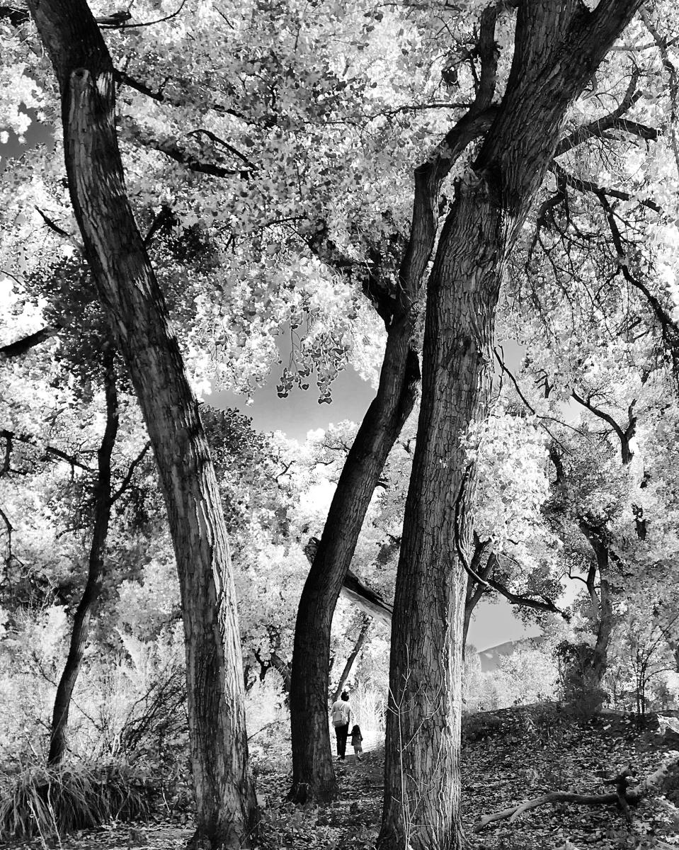Sheltered Adventure, Photograph by Nancy Haseman, New Mexico Magazine