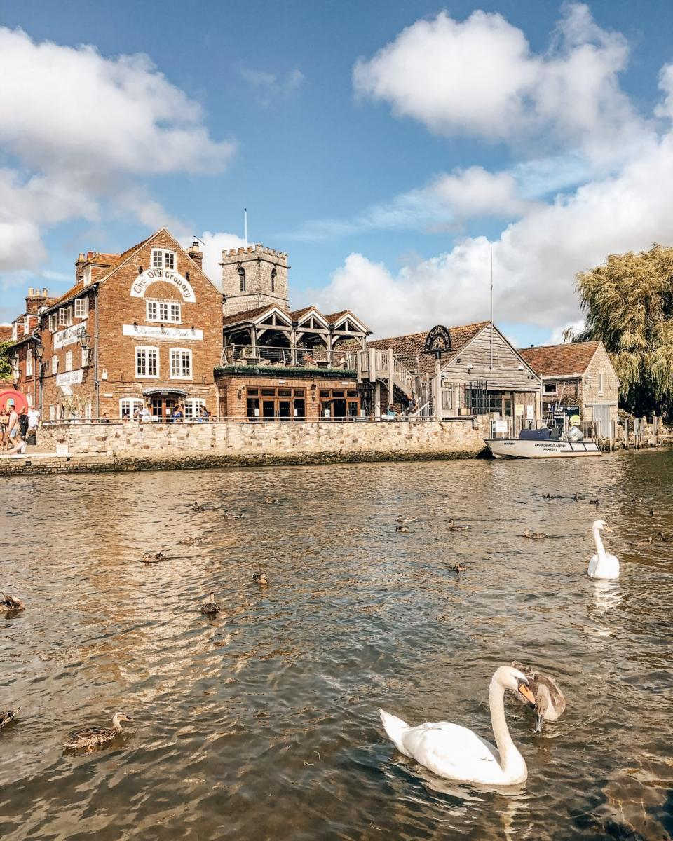 Swan on at the river at Wareham Quay