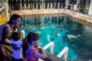 Aquarium behind the scenes