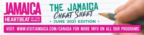 Cheat Sheet Header - June 2021