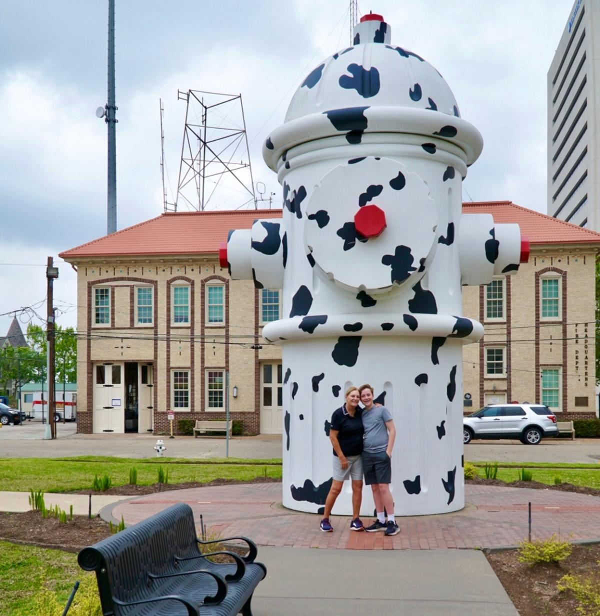 Large Cow Patterned Fire Hydrant In Beaumont, TX
