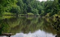 Lake Herrick
