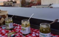 Phickles Pickles on the rooftop