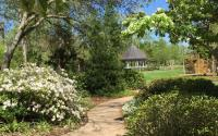 Beaumont Botanical Gardens Gazebo