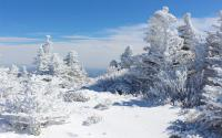Grandfather Mountain Covered with Snow in February