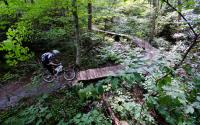 Rocky Knob Mountain Bike Park | Boone, NC