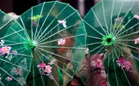 Asian Umbrellas 3745-2