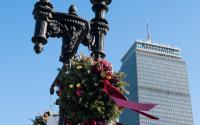 Holiday decorations along Boylston Street
