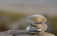 nc-beach-wedding-details-wedding-bands