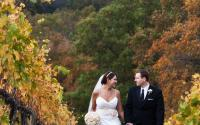 Albemarle Wedding