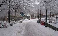 Downtown Mall in the Snow