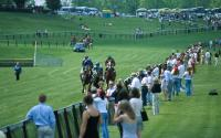 The Foxfield Races