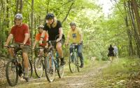 Group people biking at Michaux Forest