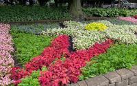 Quilt Gardens along the Heritage Trail Krider Gardens