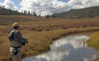 Panguitch Fly Fishing