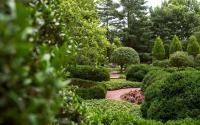 Gardens-Ashland